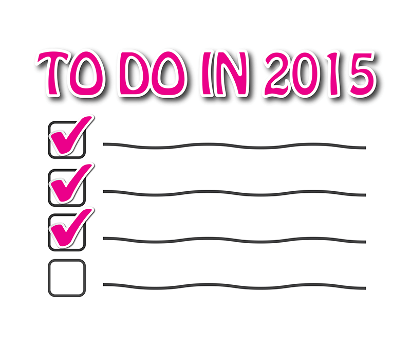 Chicks and Mortar - Goals to do list for 2015